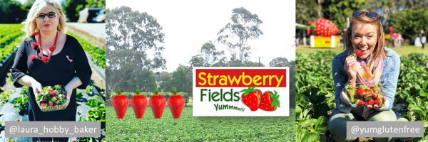 Collage of images from Strawberry Fields