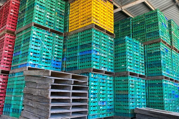 piñata farm strawberry trays