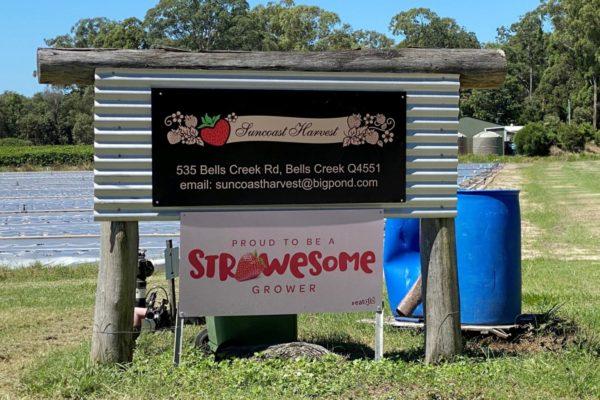 Suncoast Harvest farm sign