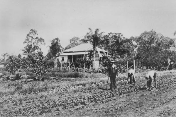 Wellington Point original farm