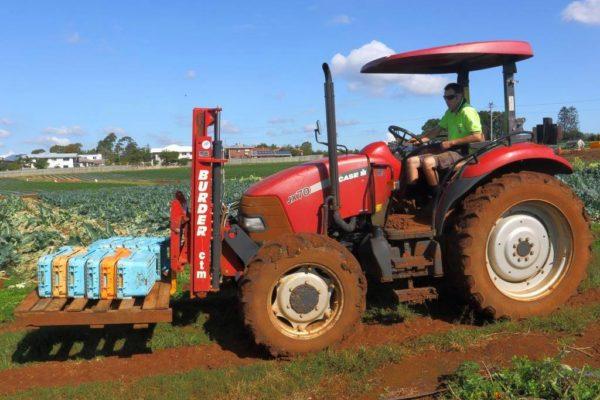 Wellington Point Strawberry Farmer