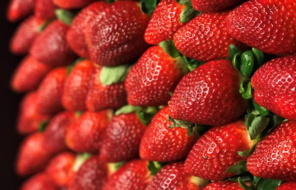 Sunray Strawberries
